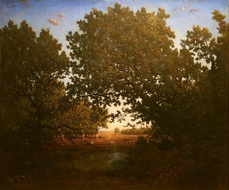 THEODORE ROUSSEAU French, 1812-1867 . Chêne penché sur une mare au Bas-Breau, forêt de Fontainebleau, c. 1860     Oil on canvas 21 5/8 x 25 3/4 in.