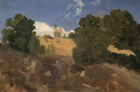 Jean-Baptiste-Camille Corot View in Fontainebleau, c. 1823-24  Oil on board 8 5/8 x 13 inches