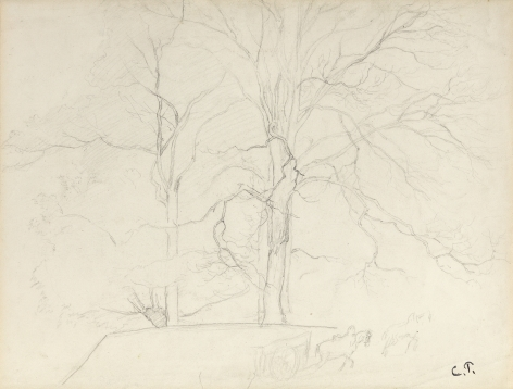 Camille Pissarro Trees in Montmorency, c. 1855-60 Pencil on paper 12 1/2 x 16 1/2 inches