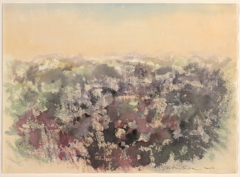Fulvio Testa  Untitled, 2006  Watercolor on paper  11 x 15 1/4 inches (28 x 38.3 cm)