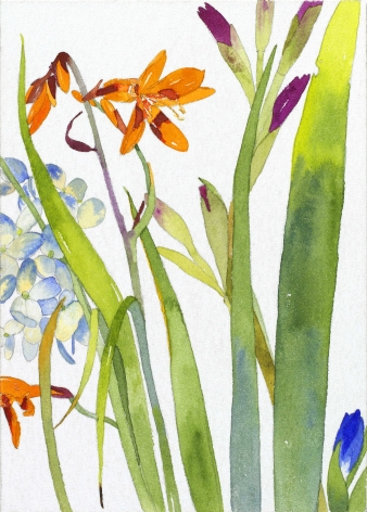 Pamela Sztybel, Orange Lily, 2016, Watercolor on  paper 7 x 5 inches