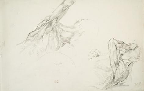 EUGENE DELACROIX French, 1798-1863 . Two Studies of the Flayed Muscles of a Man's Head and Shoulder  (Ecorché – Deux études de la tête et des épaules d'un homme)    Pencil on paper 9 5/8 x 14 5/8 in
