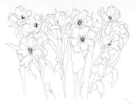 Flowers, 2016,