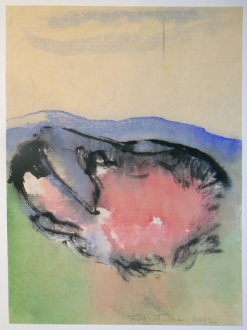 Fulvio Testa, Untitled 10, 2012    Watercolor on paper 15 5/8 x 12 3/8 inches