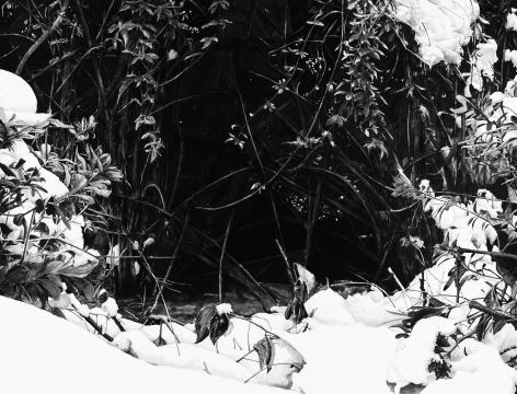 Auspicious Snow 19-3ç'žé›ª19-3