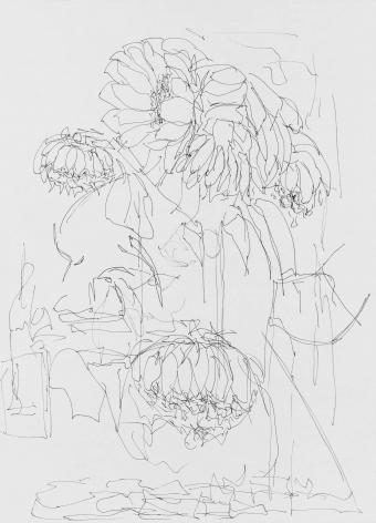 Physics (Sunflowers) 物(向日葵)