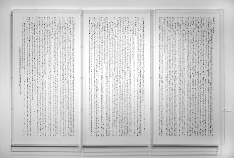 "Manuscript of Nature VIII è‡ªç""¶çš""手稿之八, 2010"