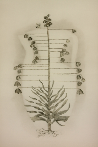 Vase of Flowers瓶花, 2011