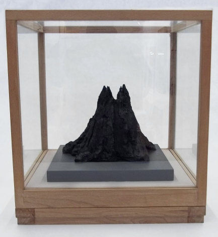 Ink Mountain 墨山, 2010