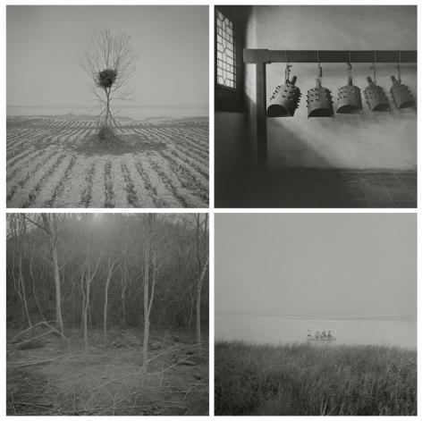 Odes of Wang II, 2010