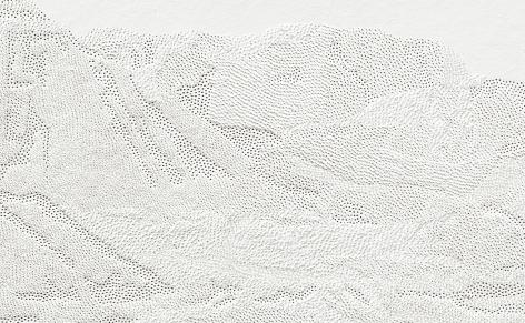 Detail, 208,500 Pinpricks