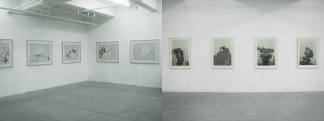 Transmitting the Ancient, Installation view