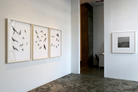 Past and PresentInstallation view