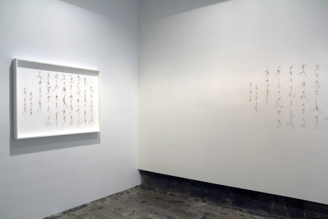 Cui Fei: Tracing the OriginInstallation view