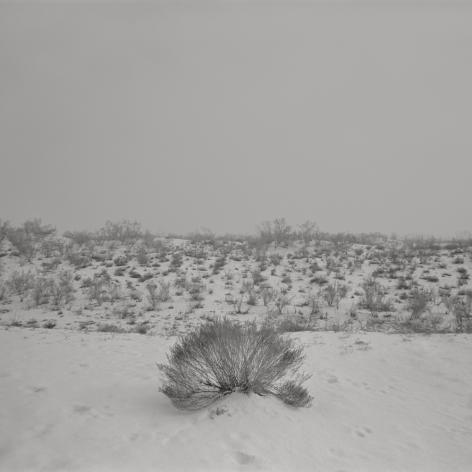 Taca Sui 塔可 (b. 1984), Odes of Qin and Bin I – Snow 秦风•豳风I – 雪中, 2011