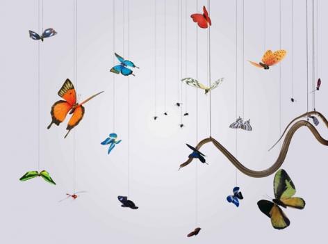 Speak, Memory of Butterflies 說吧, 記憶蝴蝶, 2005