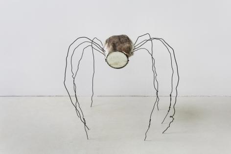 Mirrored Spider 镜面蜘蛛, 2017