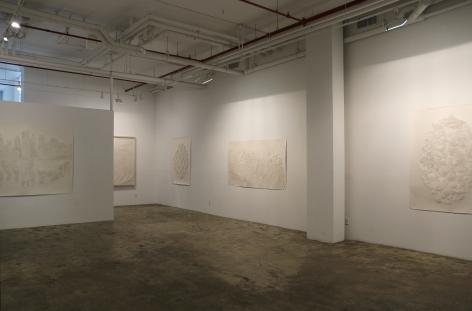 Fu Xiaotong: ProliferationInstallation view