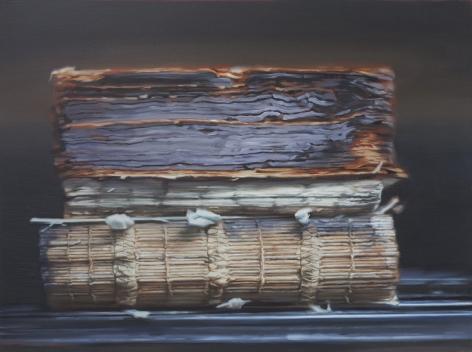 Through Fire (Books that Survived the Anti-Japanese War of Resistance at Tsinghua University No.3) 劫后余生(清华大学图书馆抗日战火中幸存书籍 #3), 2017