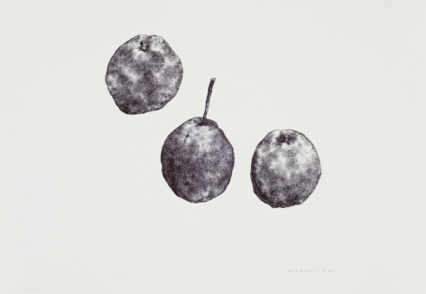 Pear No. 3梨子3, 2012