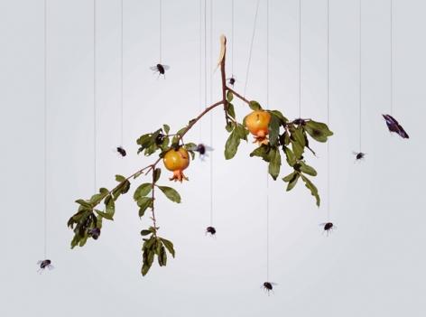 Speak, Memory of Pomegranateèªªå§, 記憶石榴, 2005