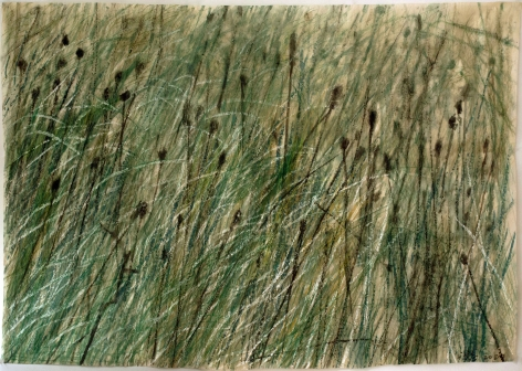 Leaves of Grass #16, 2020-2021