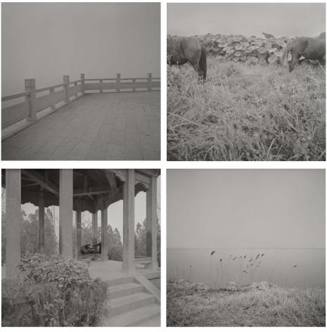 Odes of Wei II 卫风II, 2009 – 2010