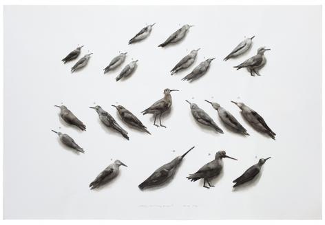 Guo Hongwei 郭鸿蔚(b. 1982), Bird No. 1