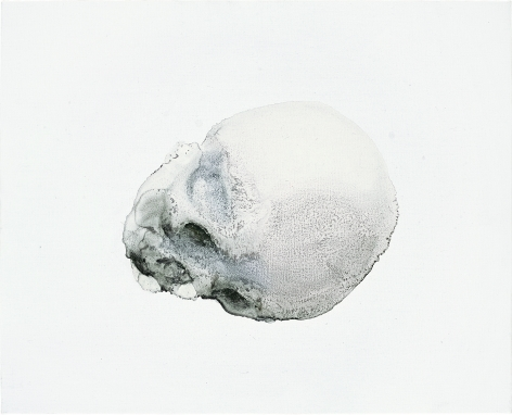 Skull No.1 骷髅 No.1, 2009