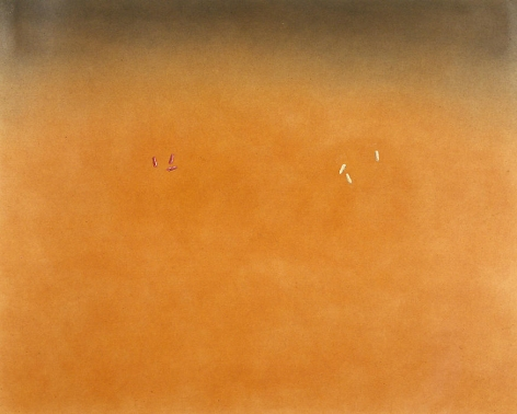 Three Seconals, Three Darvons, 1976