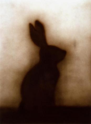 Ed Ruscha Bunny, 1986