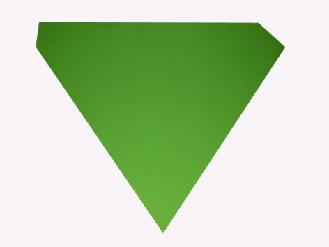 Ellsworth Kelly  Green, 1980