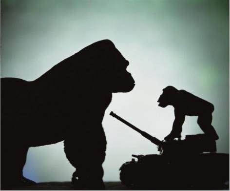 Andres Serrano Anarchy (Battle of the Monkeys), 2011