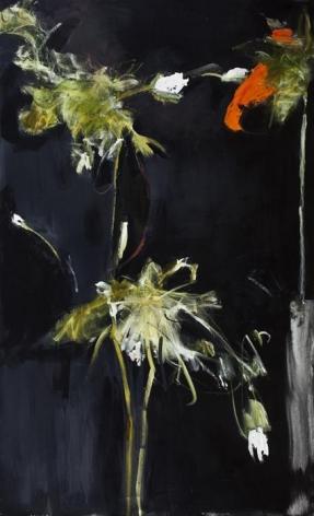 Farideh Lashai Foliage in Darkness series (red flower), 2007