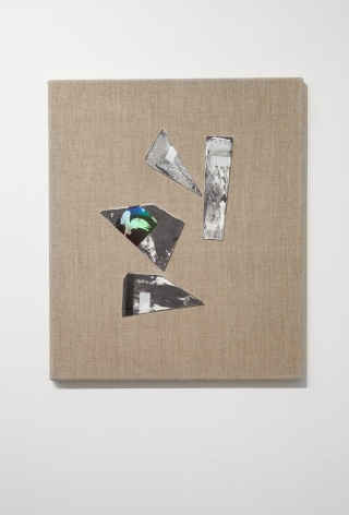 Dove Release (black), 2015
