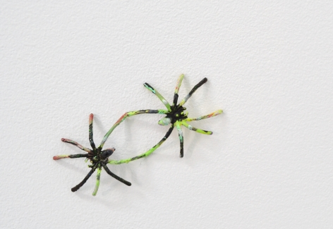 Spiders in a bag, 2014
