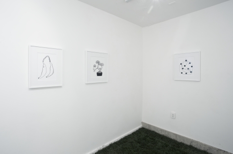 Installation view Sometimes Maybe