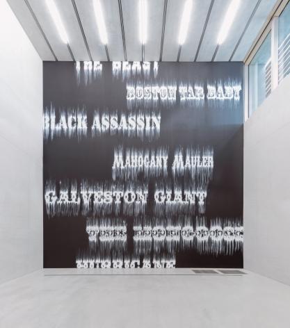 Installation view, 2014. Pérez Art Museum, Miami.
