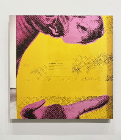 Louise Lawler, Pink and Yellow and Black II (Green Coca Cola Bottles)