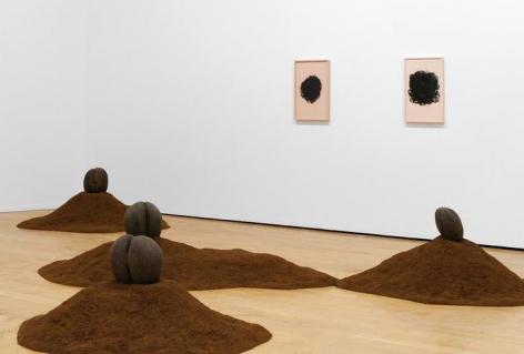 La via Moderne. Installation view, 2015. 13th Biennale de Lyon.