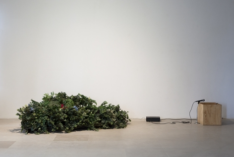 William Leavitt installation of a microphone, plywood box, and artificial plants