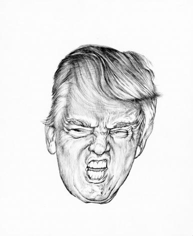 Trump Distortion #2, 2017