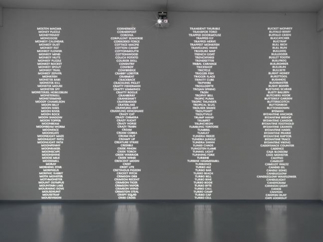 """Trevor Paglen, """"Code Names of the Surveillance State."""" Installation view, 2014. Metro Pictures, New York."""