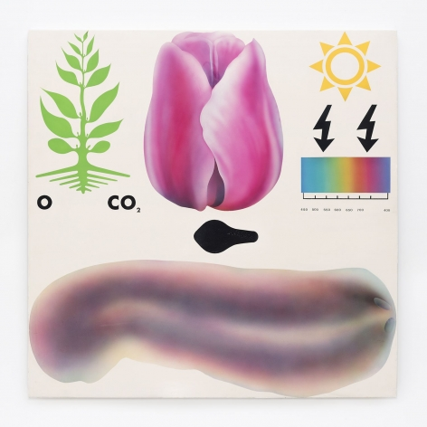 Gernot Bubenik painting 'Naturgeschichte mit Tulpe und Plattwurm'