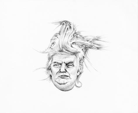 Trump Distortion #3, 2017