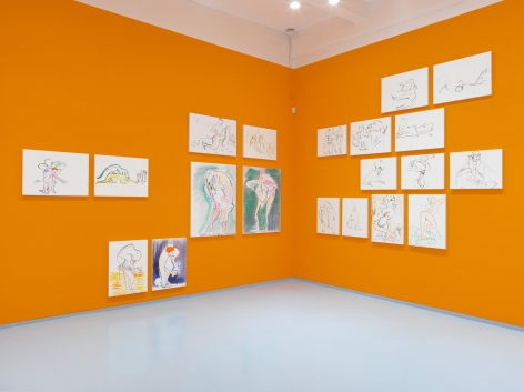 Born, Never Asked. Installation view, 2018. Metro Pictures, New York.