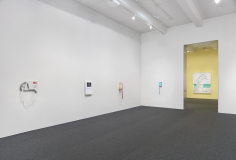 Camille Henrot. Installation view, 2015. Metro Pictures, New York.