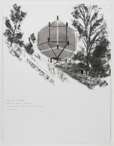 Freeze Images, 2007. Charcoal on paper, Mixed media, 25-1/2 x 20 inches (62.2 x 50.8 cm).