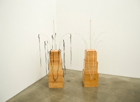 Untitled, 2001. Wood, wire, shoe buttons, and shoelaces, Two pieces: 69 x 30 x 30 inches each. MP 13