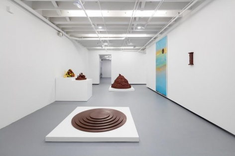 Institute of Contemporary Art, Miami. Installation view, 2016.
